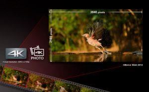 LUMIX-G-Camera-DMC-GH4_02